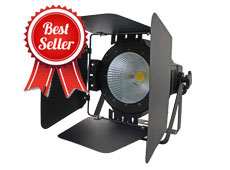 100W Indoor COB Par Light